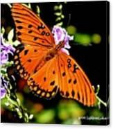 Orange Marvel Canvas Print