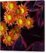 Orange Petals And Purple Leaves Canvas Print