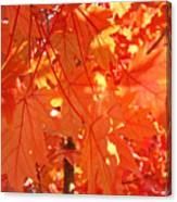 Orange Red Fall Leaves Autumn Tree Art Baslee Troutman Canvas Print