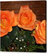 Orange Roses With Babysbreath Canvas Print