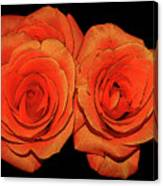 Orange Roses With Hot Wax Effects Canvas Print