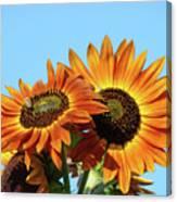 Orange Sunflowers Summer Blue Sky Art Prints Baslee Canvas Print