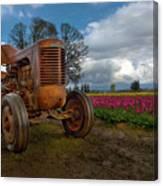 Orange Tractor At Tulip Field Canvas Print