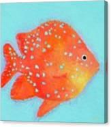 Orange Tropical Fish Canvas Print