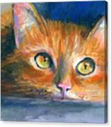 Orange Tubby Cat Painting Canvas Print