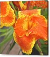 Orange Ya Glad Canvas Print