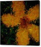 Orange-yellow Flower Canvas Print