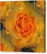 Orange You Lovely Canvas Print