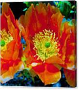 Orange3 Canvas Print