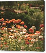Orangeade Canvas Print