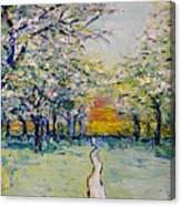 Orchard Path Canvas Print