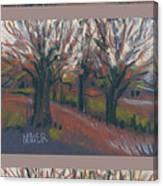 Orchard Sunset Canvas Print