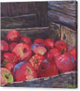 Orchard's Harvest Canvas Print