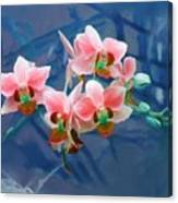 Orchid Flowers 8 Canvas Print
