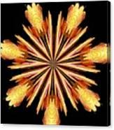 Orchid Kaleidoscope 10 Canvas Print