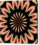 Orchid Kaleidoscope 3 Canvas Print