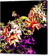 Orchidelia Canvas Print
