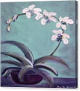 Orchids 5 Canvas Print
