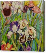 Orchids And Irises II  Canvas Print