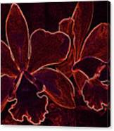 Orchids - For Pele Canvas Print