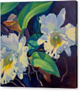 Orchids In A Blue Pot Canvas Print