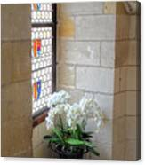 Orchids In The Chateau Canvas Print