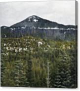 Oregon Cascade Range Forest Canvas Print
