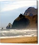 Oregon Coast 12 Canvas Print