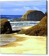 Oregon Coast 18 Canvas Print