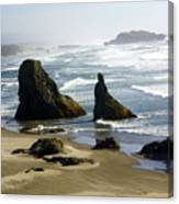 Oregon Coast 19 Canvas Print