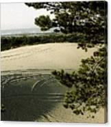 Oregon Dunes 3 Canvas Print