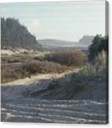 Oregon Dunes 5 Canvas Print