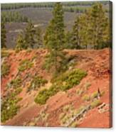 Oregon Landscape - Red Crater Canvas Print