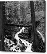 Oregon River Black And White Canvas Print