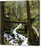 Oregon River Canvas Print