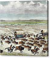 Oregon Trail: Stampede Canvas Print