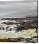 Oregon's Rugged Coast Canvas Print