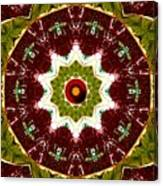 Organic Popart Canvas Print