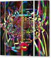 Organized Noise Canvas Print