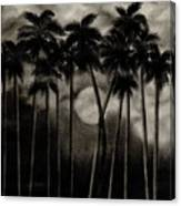 Original Moonlit Palm Trees  Canvas Print