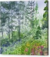 Original Watercolor - Summer Pine Forest Canvas Print