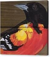 Oriole 6 Canvas Print