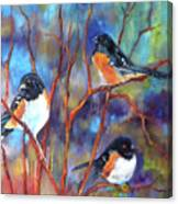 Orioles In Dogwood Canvas Print
