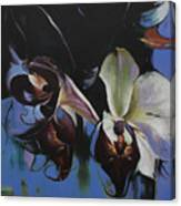 Orkidoo Canvas Print