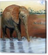 Orphaned Canvas Print
