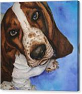 Otis The Basset Hound Canvas Print