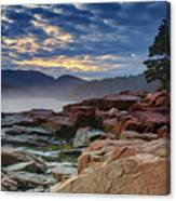 Otter Cove In The Mist Canvas Print