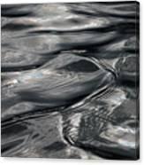 Otter Ripples Canvas Print