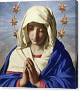 Our Lady Of Health Canvas Print