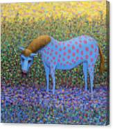 Out Of The Pasture Canvas Print